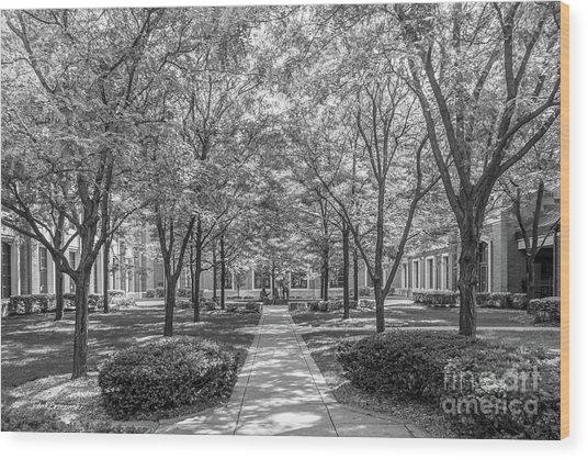 Depaul University Richardson Library Courtyard Wood Print