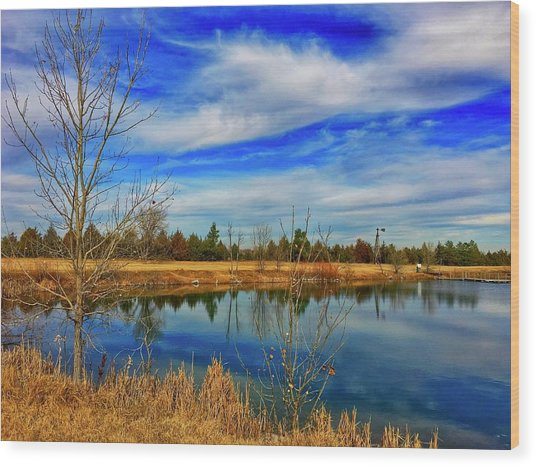 Wood Print featuring the photograph Depoorter Lake by Dan Miller