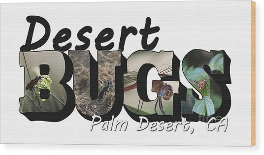 Desert Bugs Big Letter Wood Print
