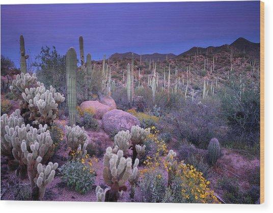 Desert Garden Wood Print by Ericfoltz
