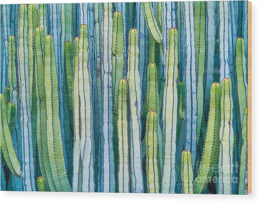 Detail View Of The Cardon Cactus In Wood Print