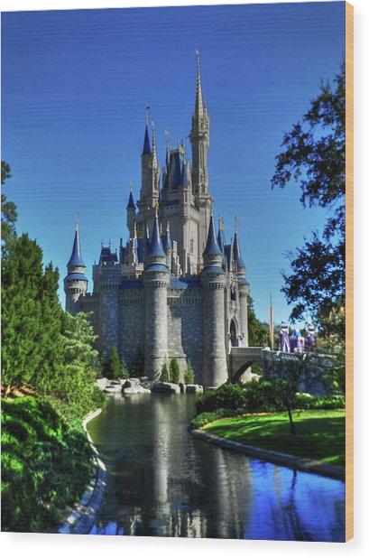 Wood Print featuring the photograph Disney Hdr 002 by Lance Vaughn