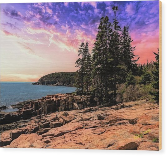Distant View Of Otter Cliffs,acadia National Park,maine. Wood Print