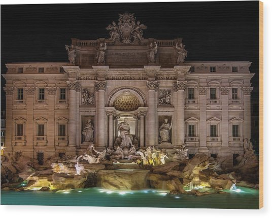 Ditrevi Fountain At Night Wood Print