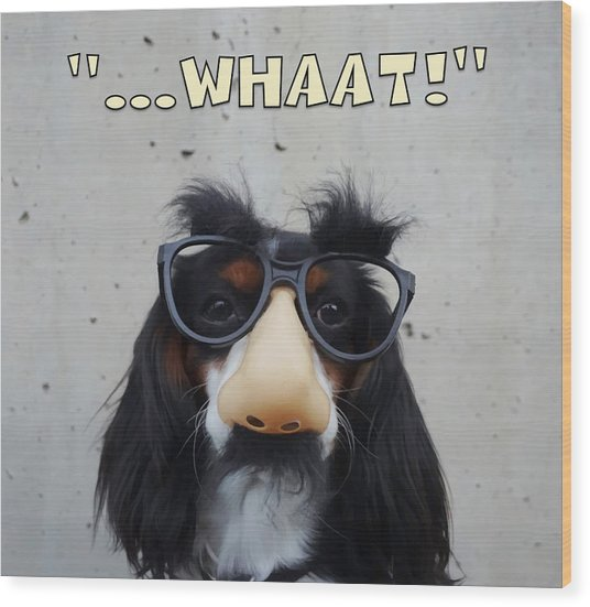 Wood Print featuring the digital art Dog Gone Funny by ISAW Company