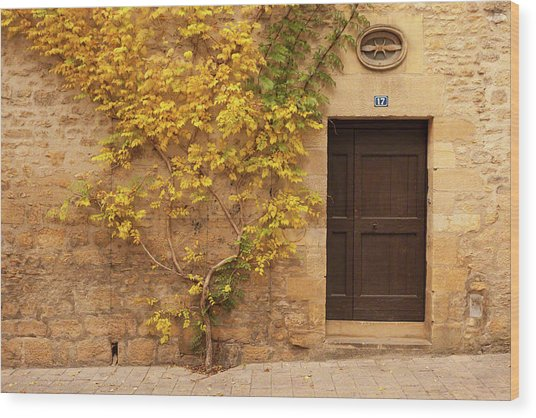 Doorway, Sarlat, France Wood Print