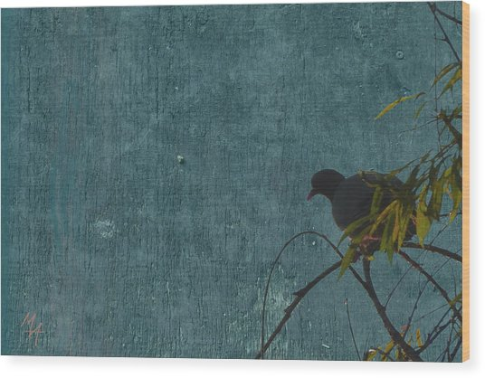 Wood Print featuring the photograph Dove In Blue by Attila Meszlenyi