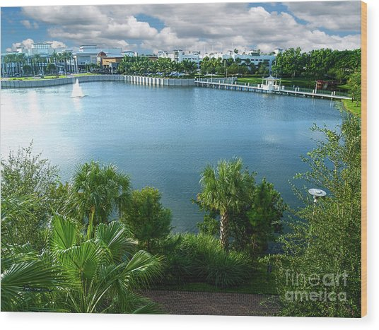 Downtown At The Gardens Mall Palm Beach Florida C2 Wood Print