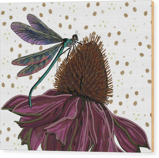 Dragon Fly And Echinacea Flower Wood Print