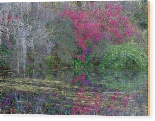 Dream Reflection Wood Print