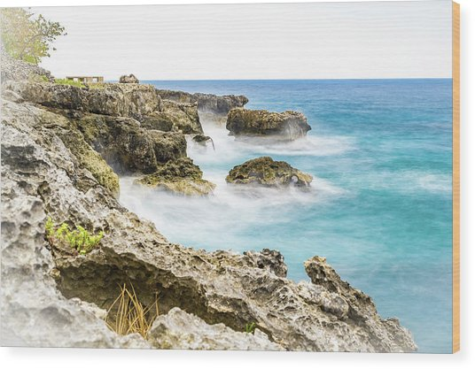 Dreaming Of Negril Wood Print