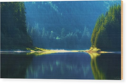 Wood Print featuring the photograph Dreamlike Focus Of Merrill Lake by Dee Browning