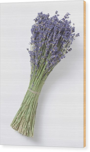 Dried Lavender Bunch, Elevated View Wood Print by Westend61