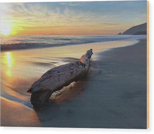 Drift Wood At Sunset II Wood Print