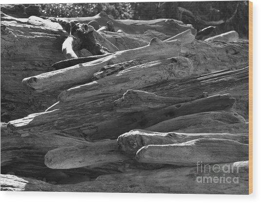 Drifted Wood Wood Print