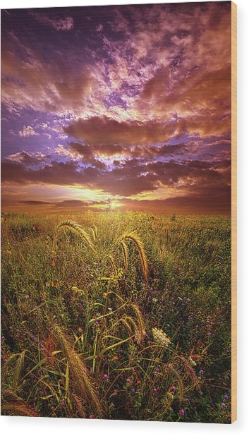 Wood Print featuring the photograph Drwing Near by Phil Koch
