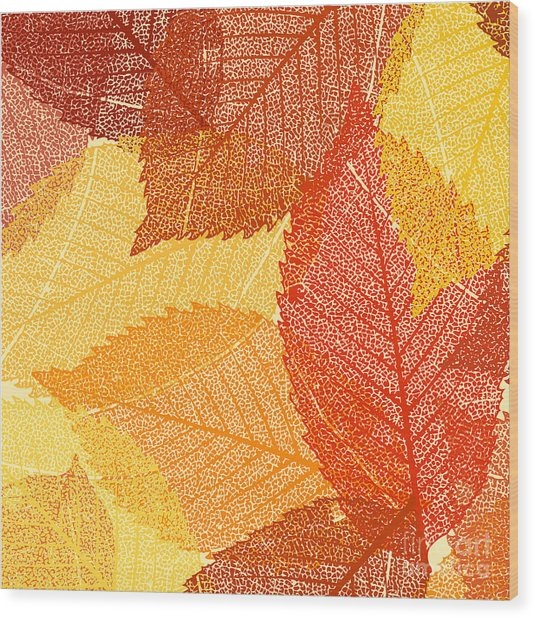 Dry Autumn Leaves Template. Eps 8 Wood Print