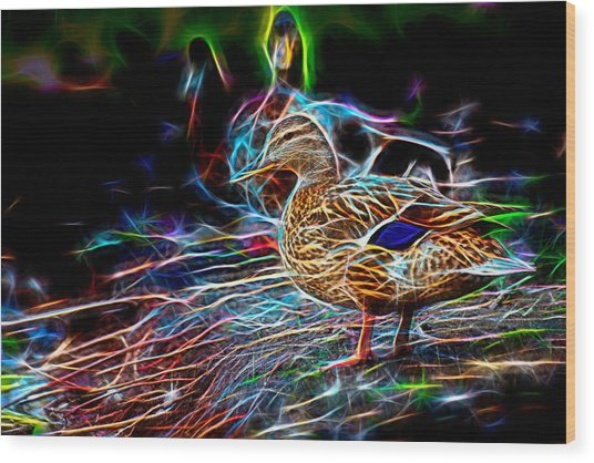 Ducks On Shore Wizard Wood Print