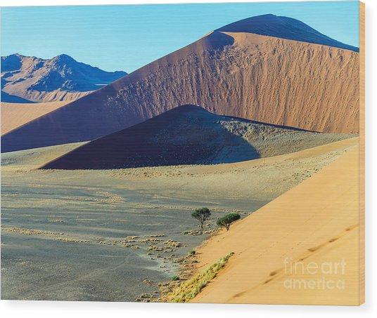 Dunes In Sossusvlei Plato Of Namib Wood Print