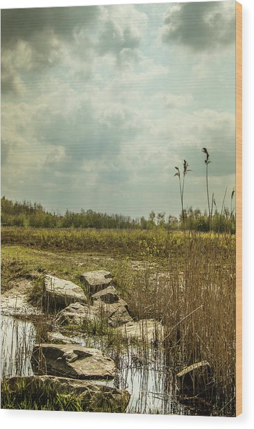 Wood Print featuring the photograph Dutch Landscape. by Anjo Ten Kate