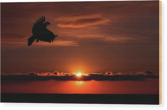 Eagle In A Red Sky Wood Print