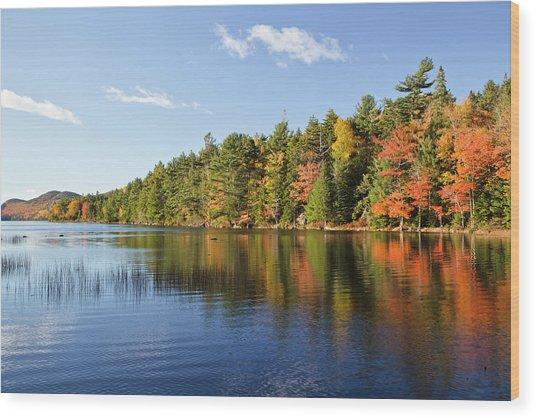 Eagle Lake Autumn Morning, Acadia Wood Print