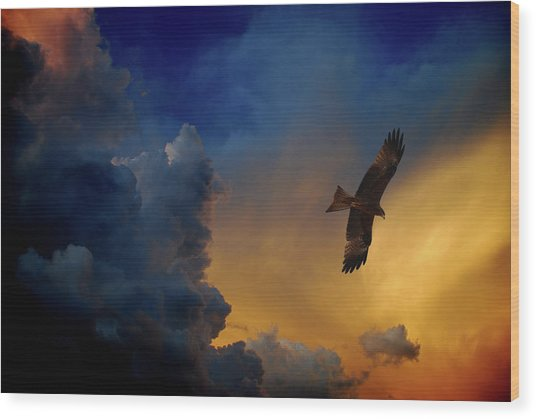 Eagle Over The Top Wood Print by Gopan G Nair