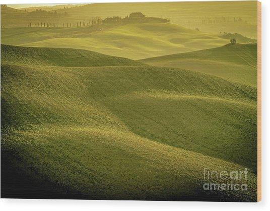 Early Morning On Southern Tuscan Farmland Wood Print