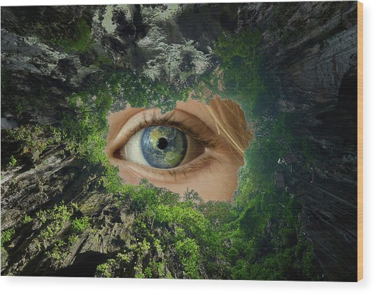 Earth Is Watching You Wood Print
