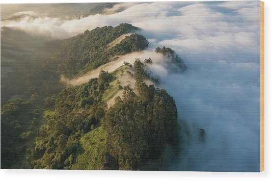 East Bay Morning Hills Wood Print by Vincent James