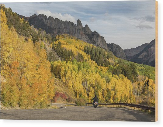 Wood Print featuring the photograph Easy Autumn Rider by James BO Insogna