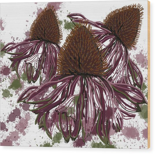 Wood Print featuring the drawing Echinacea Flowers Line by Joan Stratton