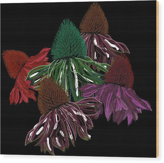 Echinacea Flowers With Black Wood Print