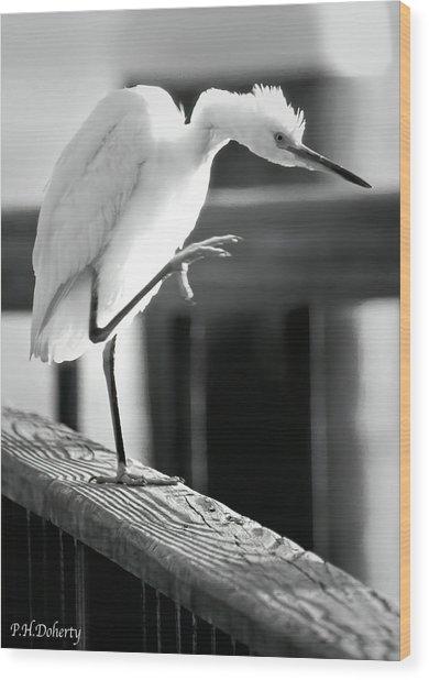 Egret Tai Chi Wood Print