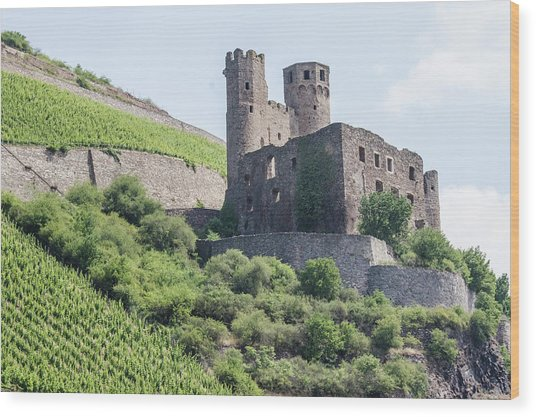 Ehrenfels Castle Wood Print