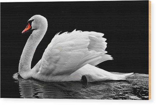 Elegant Swan Wood Print