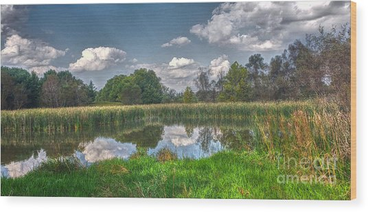 Ellis Pond Wood Print