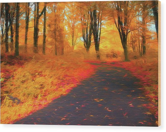 Emmaus Community Park Path - Colors Of Fall Wood Print