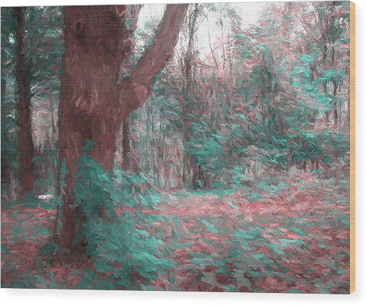 Emmaus Community Park Trail With Large Tree Wood Print