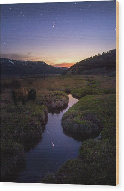 Enchanting Yellowstone / Yellowstone National Park  Wood Print