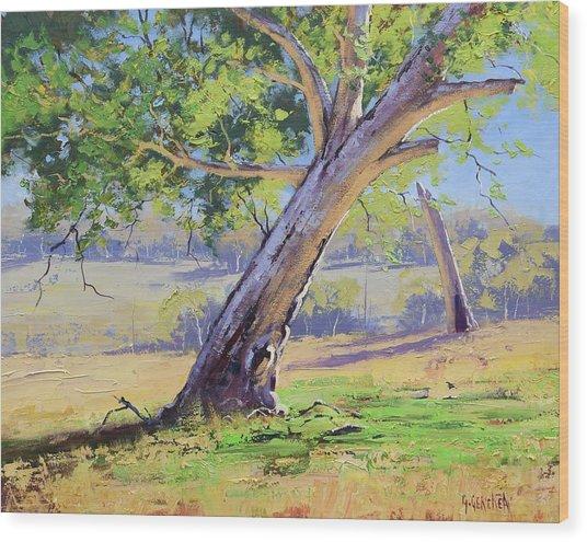 Eucalyptus Tree Australia Wood Print