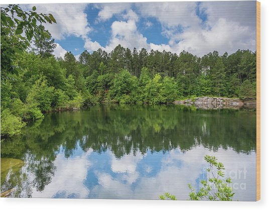 Euchee Creek Park - Grovetown Trails Near Augusta Ga 1 Wood Print