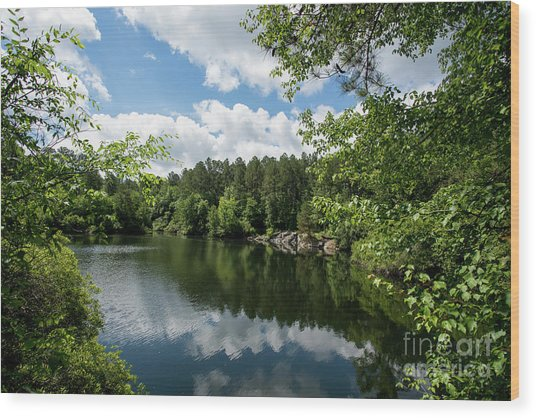 Euchee Creek Park - Grovetown Trails Near Augusta Ga 2 Wood Print