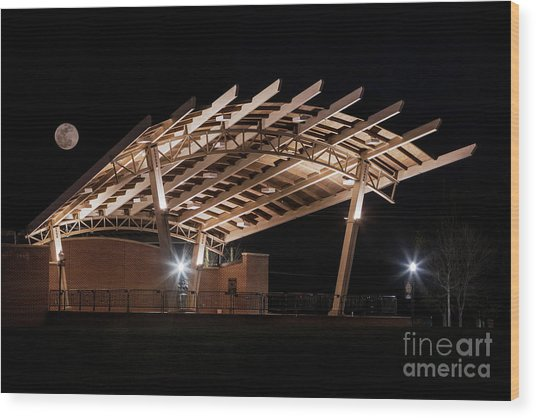 Evans Towne Center Park - Augusta Ga Wood Print