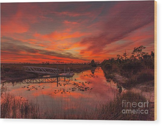 Explosive Sunset At Pine Glades Wood Print