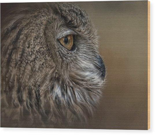 Eye Of Wisdom  Wood Print