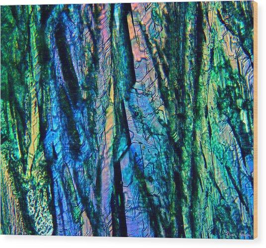 Fading Splendor Wood Print