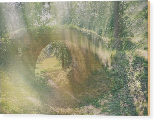 Wood Print featuring the photograph Fairytale Bridge. Kachanivka, 2017. by Andriy Maykovskyi