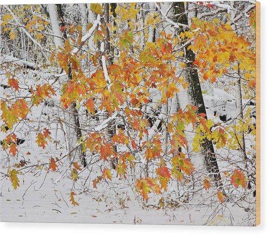 Fall And Snow Wood Print