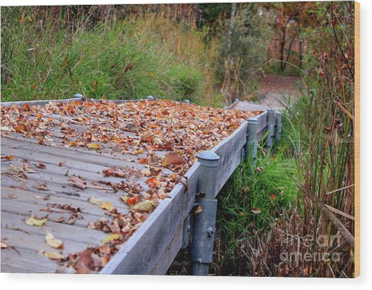 Fall Boardwalk Wood Print